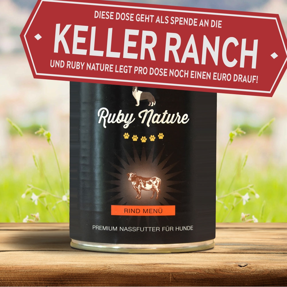 Spendendose Keller Ranch