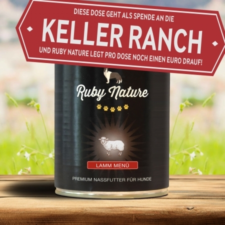 Spendendose Kellerranch